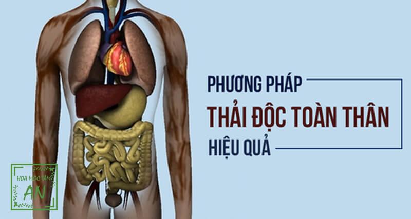 Phương pháp chăm sóc sức khỏe dựa trên nguyên lý bài độc của cơ thể