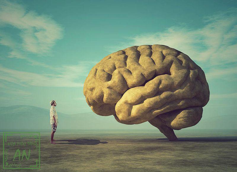 Sống chậm là thói quen tốt cho não bộ