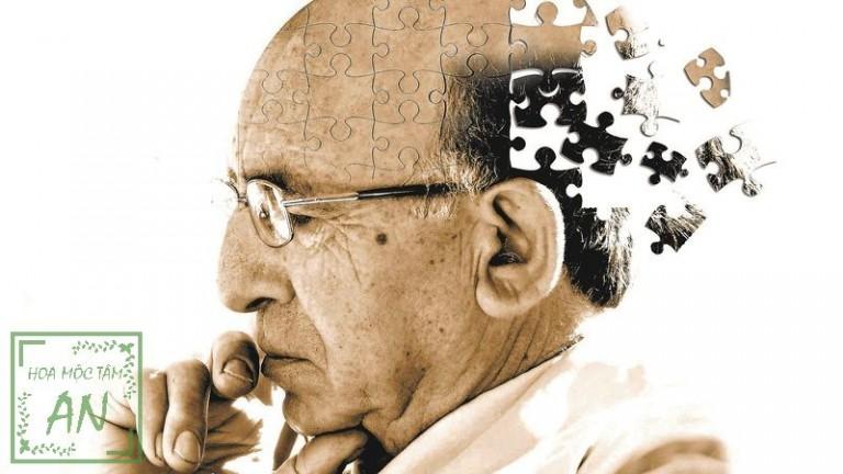 suy giảm trí nhớ ở người già